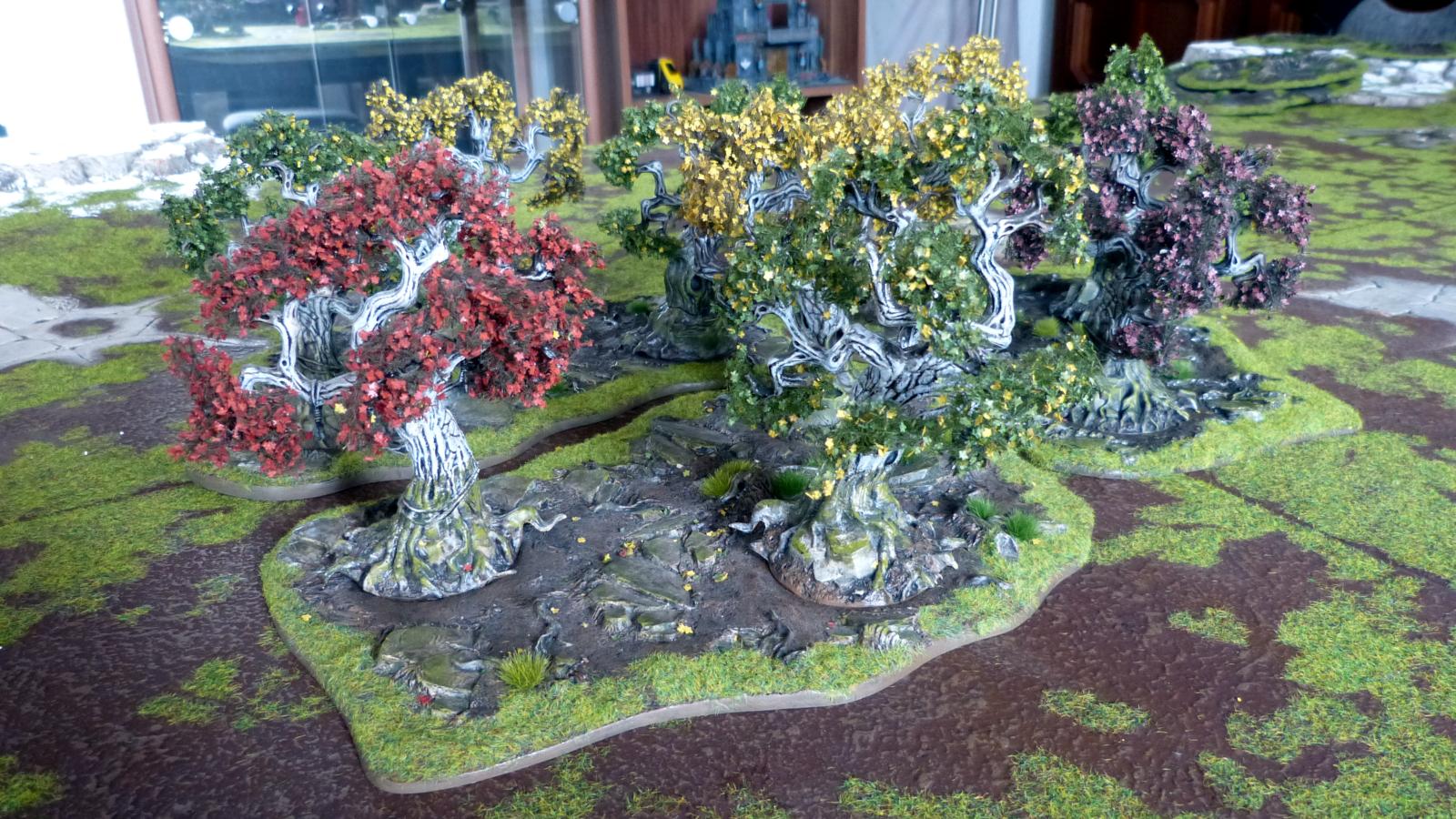 Wälder im Farbrausch